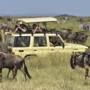 21 Days Kilimanjaro Serengeti Safari Zanzibar Combo Tours