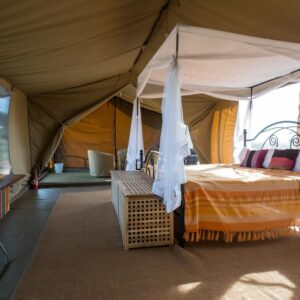 5 Days to Serengeti Park Tarangire and Ngorongoro Crater
