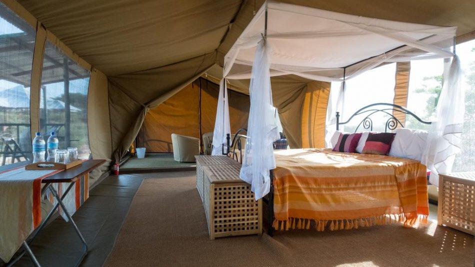 5 Days to Serengeti Park Tarangire and Ngorongoro Crater