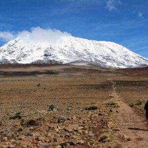 6 Days Shira Route Trek