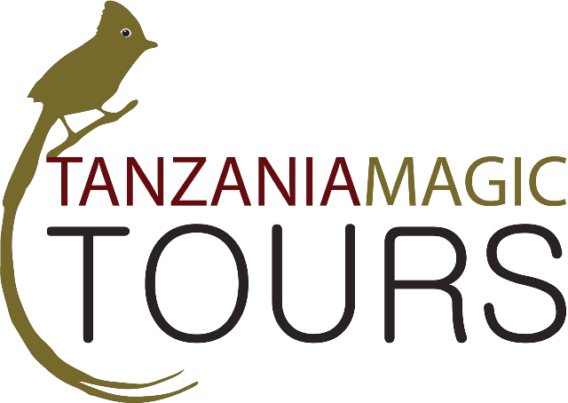 Tanzania Magic Tours