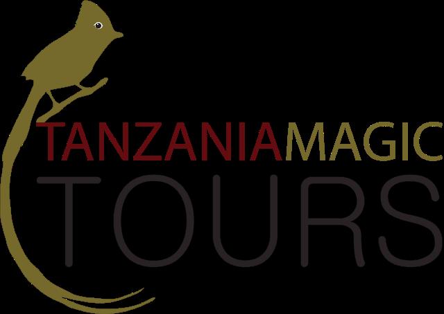 Tanzania Magic Tours