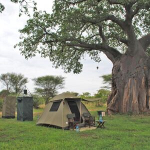 Serengeti Expedition 3 Nights Camping Safari
