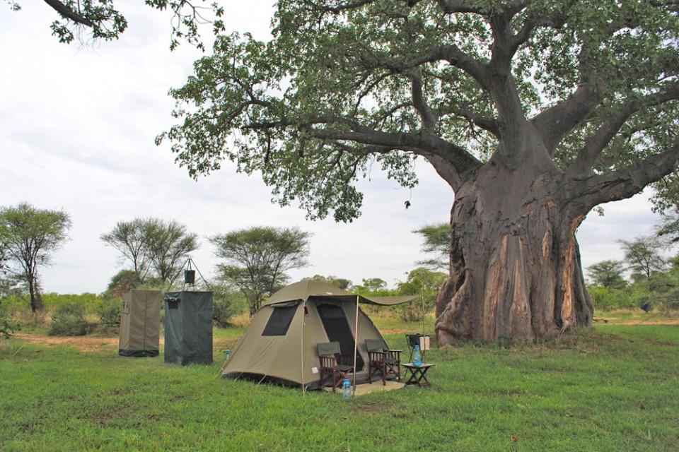 Serengeti Expedition 3 Nights Camping Safari