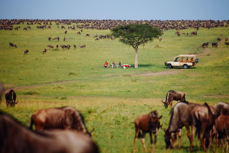 Southern Serengeti Migration Safari