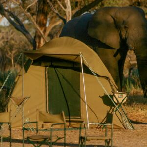 Tanzania Budget Camping Safaris