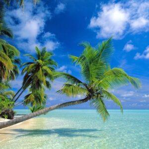 Zanzibar Beach Holiday Packages